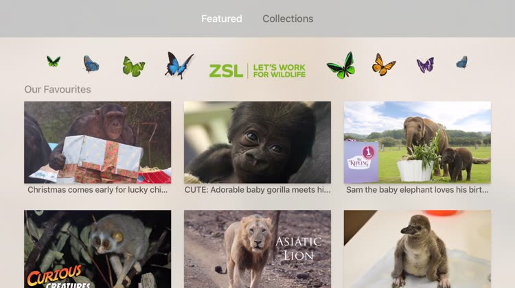 Features and collections