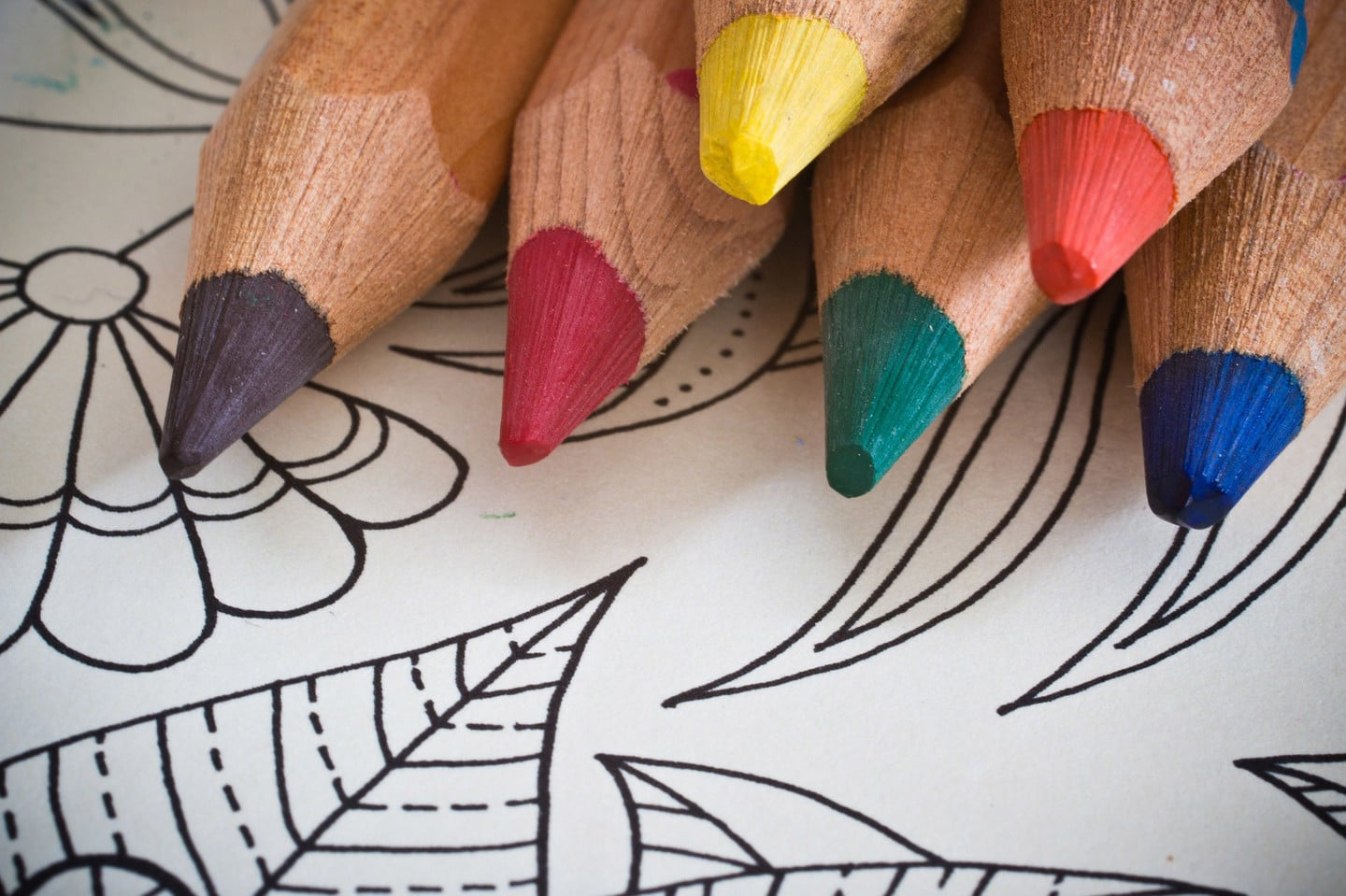 Coloring Book Pencils