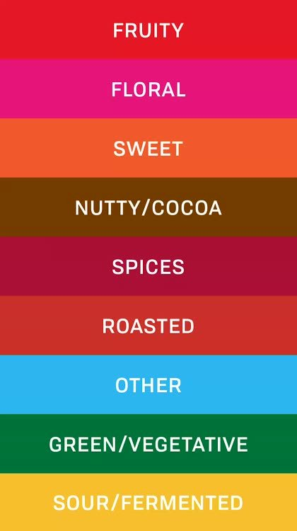 Create Taste Cards with Palate