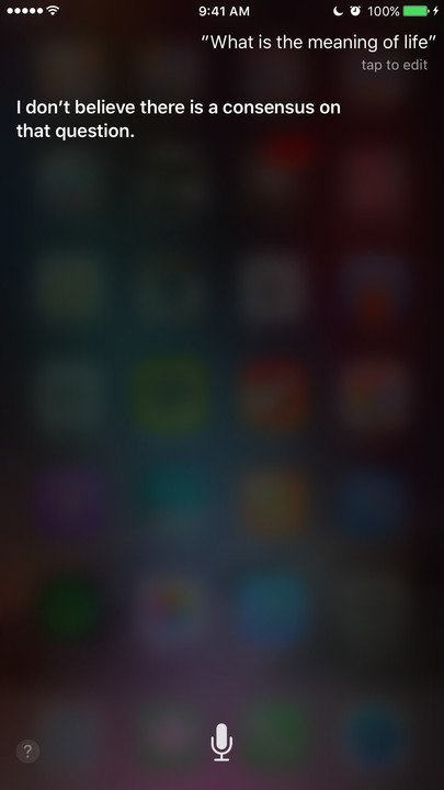 Siri meaning of life