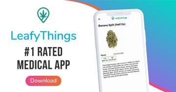 Leafythings Is an All-Inclusive Directory App for Cannabis Users and Vendors in Canada